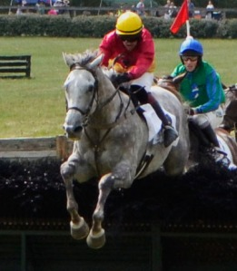 Ross Geraghty riding horse